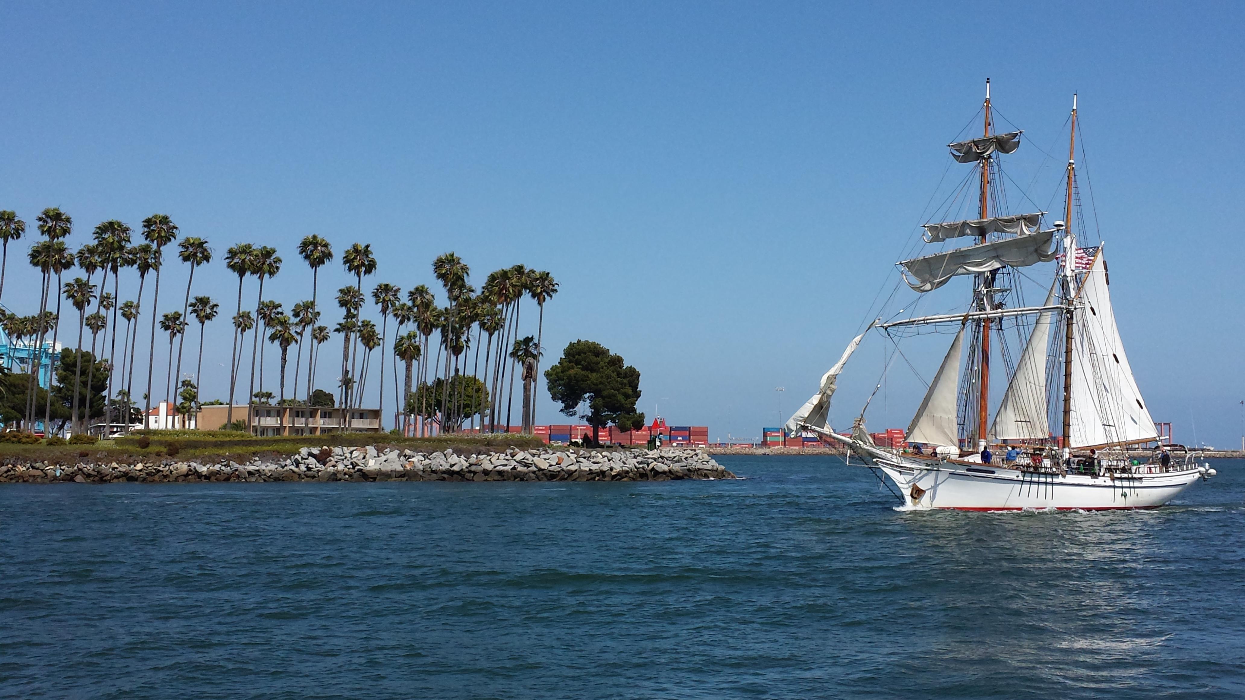 exy johnson sailing ship